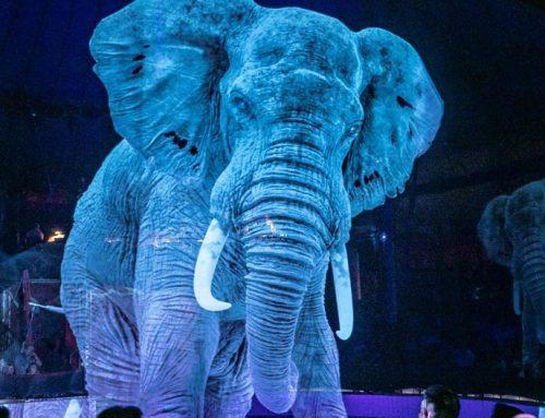 Цирк с холограмни животни!